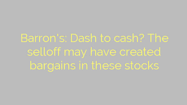 Barron's: Dash to cash? The selloff may have created bargains in these stocks
