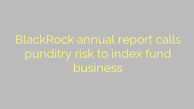 BlackRock annual report calls punditry risk to index fund business