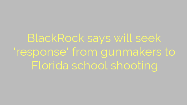 BlackRock says will seek 'response' from gunmakers to Florida school shooting