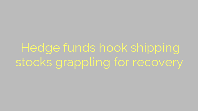Hedge funds hook shipping stocks grappling for recovery