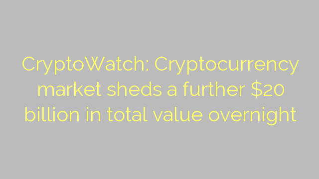 CryptoWatch: Cryptocurrency market sheds a further $20 billion in total value overnight