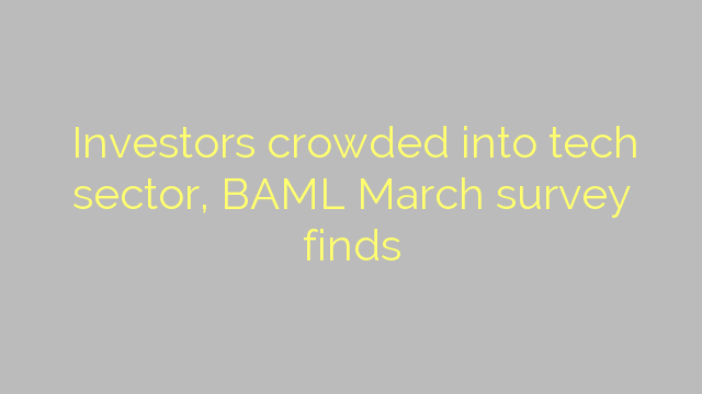 Investors crowded into tech sector, BAML March survey finds