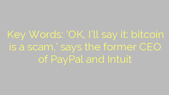 Key Words: 'OK, I'll say it: bitcoin is a scam,' says the former CEO of PayPal and Intuit