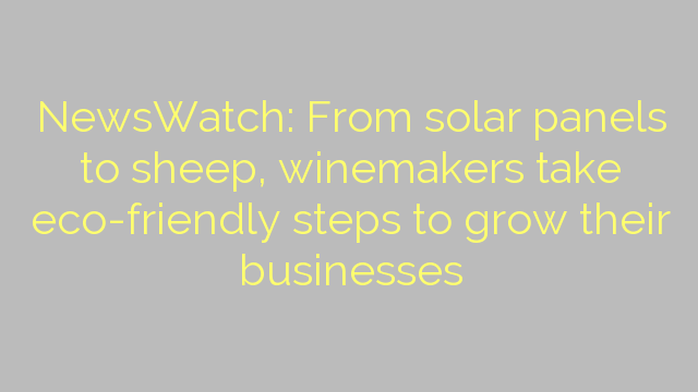 NewsWatch: From solar panels to sheep, winemakers take eco-friendly steps to grow their businesses