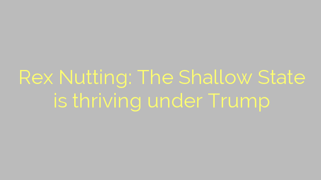 Rex Nutting: The Shallow State is thriving under Trump
