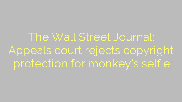 The Wall Street Journal: Appeals court rejects copyright protection for monkey's selfie