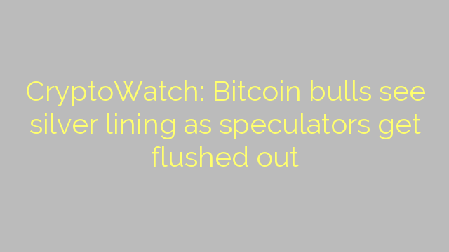 CryptoWatch: Bitcoin bulls see silver lining as speculators get flushed out