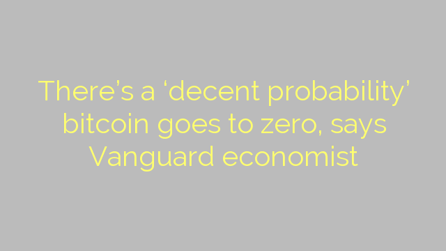 There's a 'decent probability' bitcoin goes to zero, says Vanguard economist
