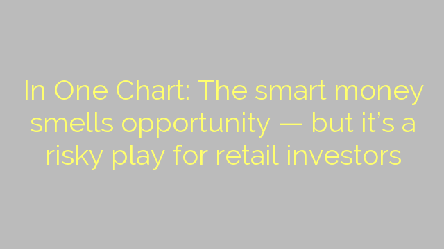 In One Chart: The smart money smells opportunity — but it's a risky play for retail investors