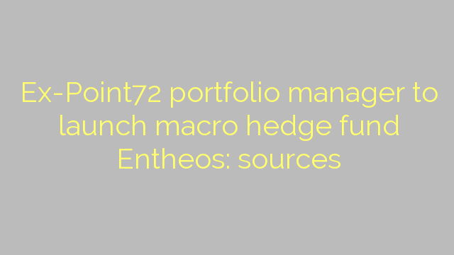 Ex-Point72 portfolio manager to launch macro hedge fund Entheos: sources