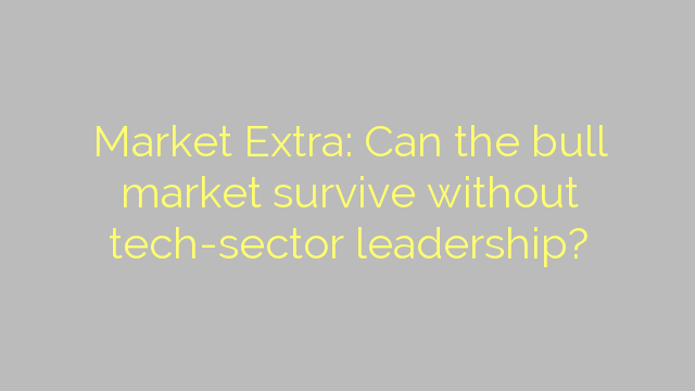Market Extra: Can the bull market survive without tech-sector leadership?