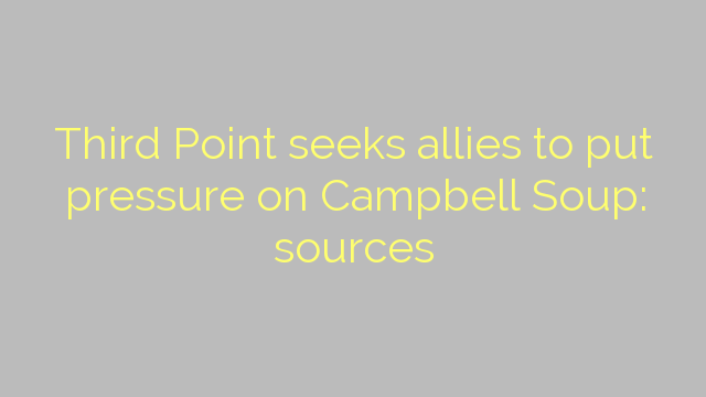 Third Point seeks allies to put pressure on Campbell Soup: sources