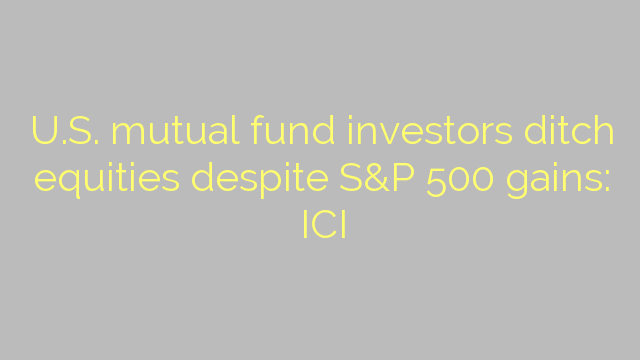 U.S. mutual fund investors ditch equities despite S&P 500 gains: ICI