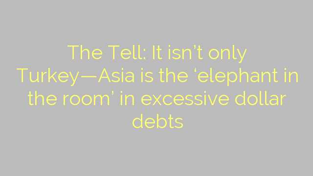 The Tell: It isn't only Turkey—Asia is the 'elephant in the room' in excessive dollar debts