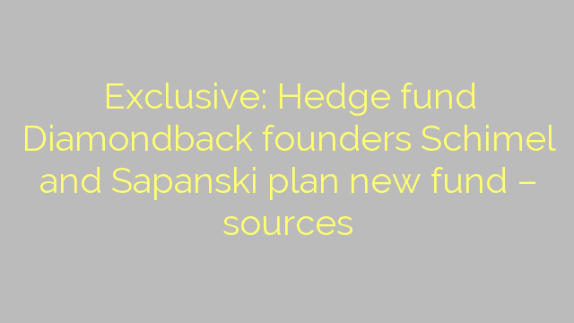 Exclusive: Hedge fund Diamondback founders Schimel and Sapanski plan new fund – sources