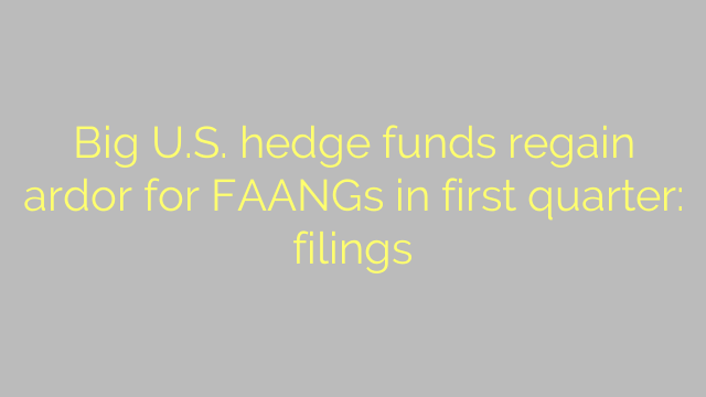 Big U.S. hedge funds regain ardor for FAANGs in first quarter: filings