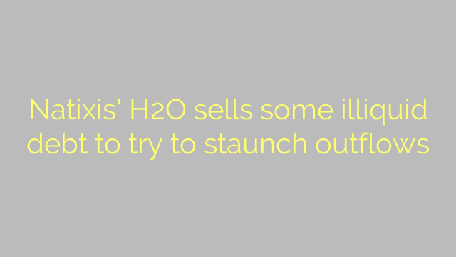 Natixis' H2O sells some illiquid debt to try to staunch outflows