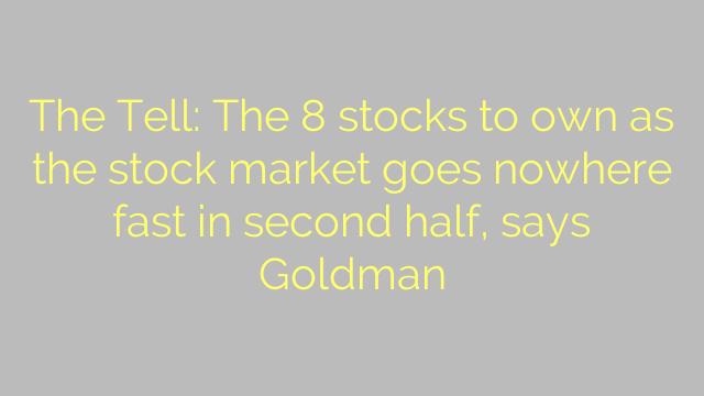 The Tell: The 8 stocks to own as the stock market goes nowhere fast in second half, says Goldman