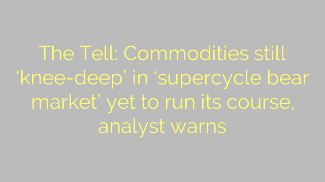 The Tell: Commodities still 'knee-deep' in 'supercycle bear market' yet to run its course, analyst warns