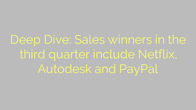 Deep Dive: Sales winners in the third quarter include Netflix, Autodesk and PayPal