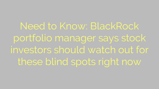 Need to Know: BlackRock portfolio manager says stock investors should watch out for these blind spots right now