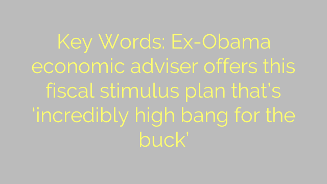 Key Words: Ex-Obama economic adviser offers this fiscal stimulus plan that's 'incredibly high bang for the buck'